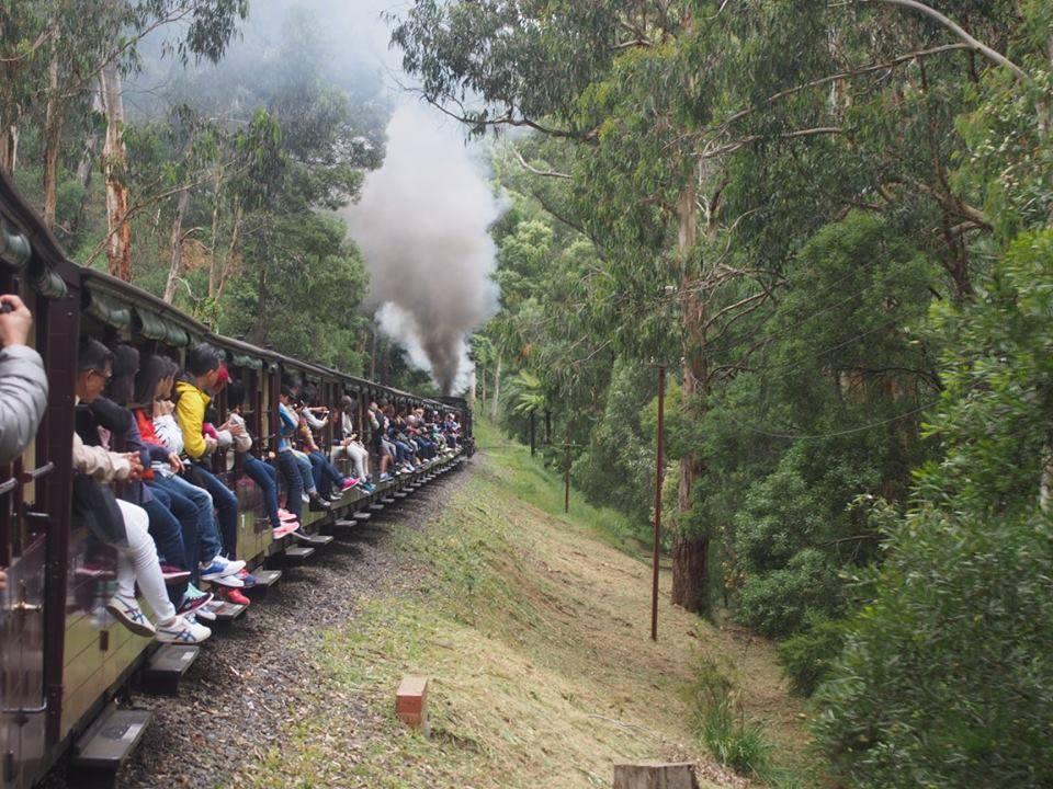 ダンデノン丘陵の蒸気機関車。