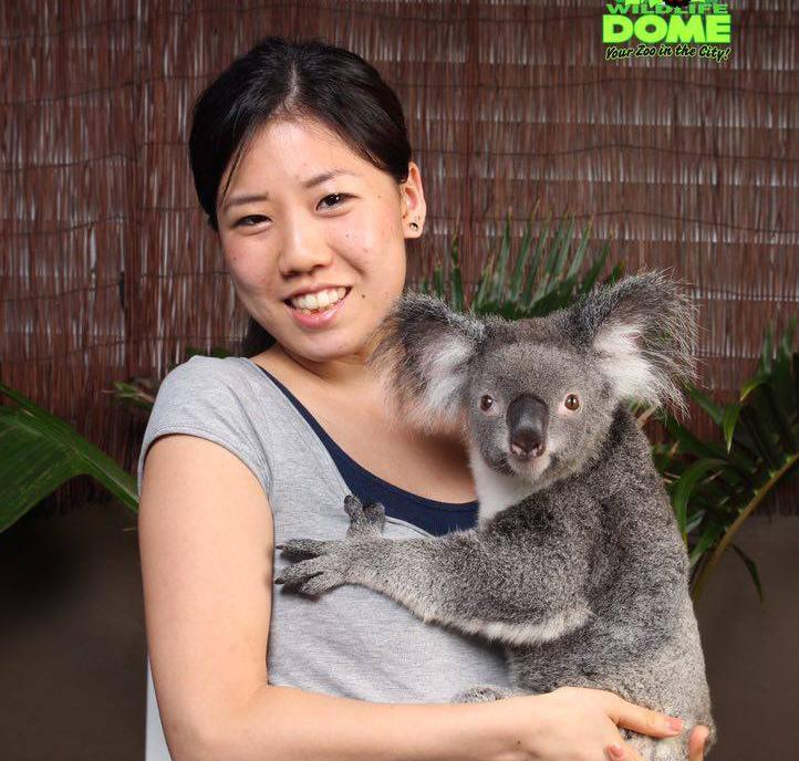 アクティビティで行った動物園にてコアラと