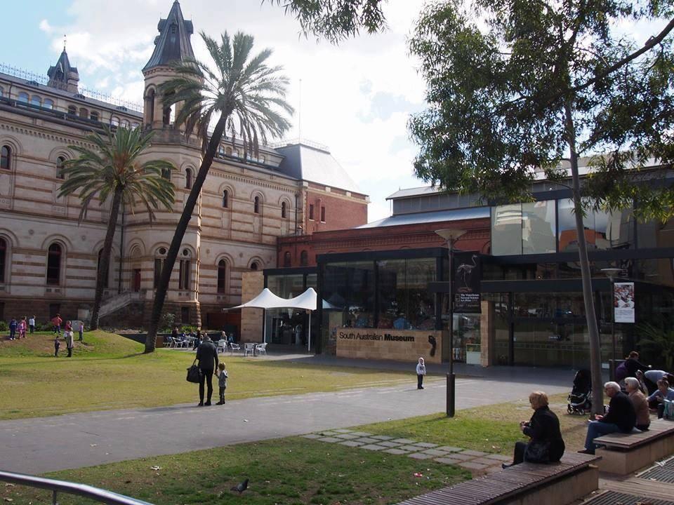 アデレードの図書館