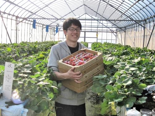 イチゴ中心に農業コンサルタントとして活躍する宮崎さん。