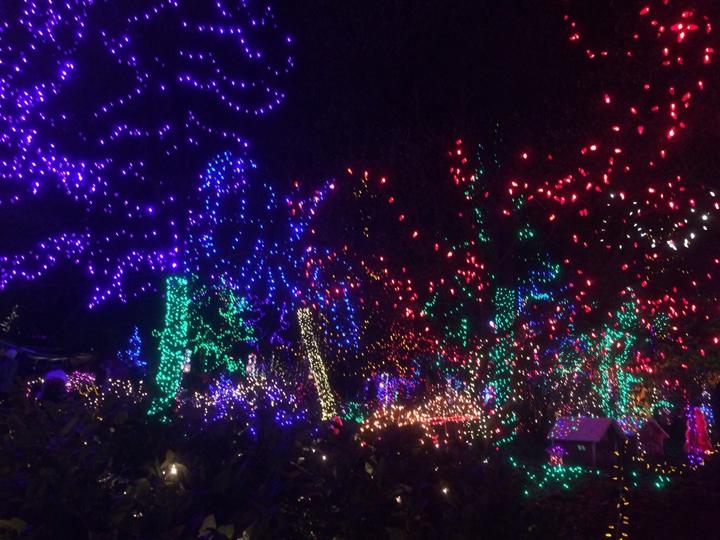 バンクーバーのクリスマスの装飾。バンクーバーの新アトラクションとして人気を集めているフライオーバー。