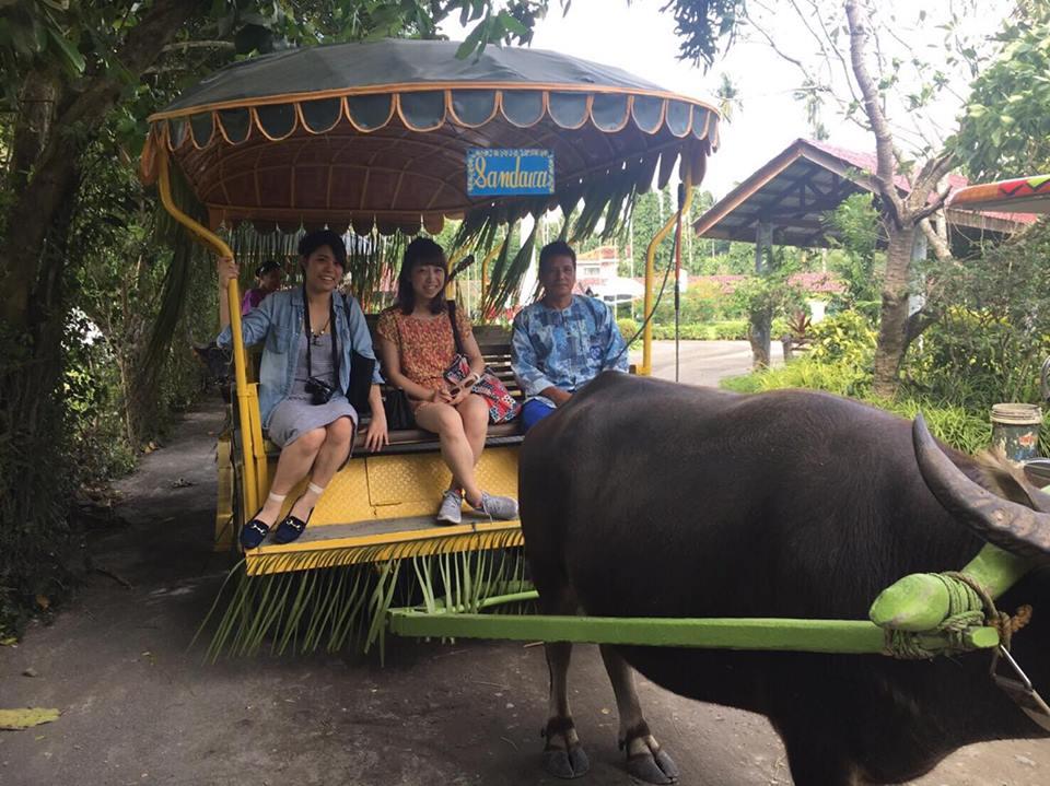フィリピン出張中。