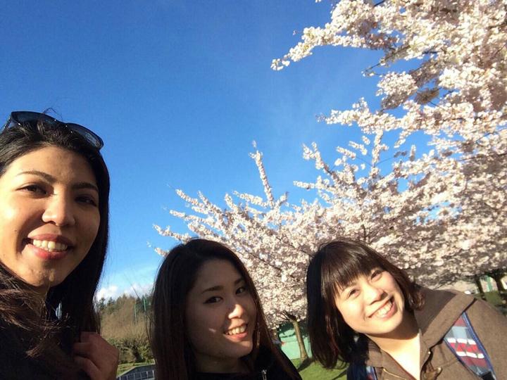 春、サクラ咲くバンクーバーの公園にて。